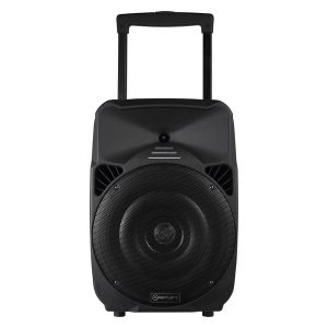 "Amplify Spartan 15 Series 15"" Bluetooth Trolley Speaker"