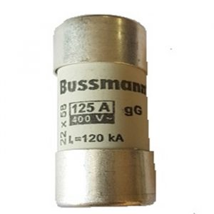 OmniPower Fuse 125A 22x58